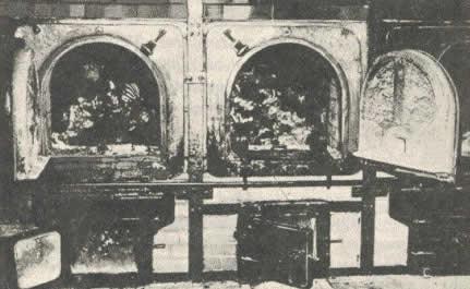 صور نادرة لتاريخ هتلر لليهود holo341.jpg